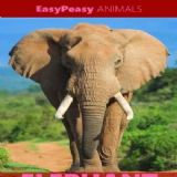 Download EasyPeasy Animals Cell Phone Software