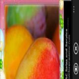 Download Cameras Avatar Cell Phone Software